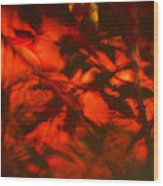 Visions Of The Forest Floor Wood Print