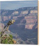 visit to Grand Canyon  Wood Print