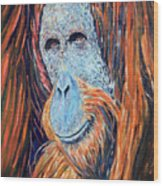 Visit To The Zoo Wood Print
