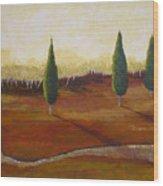 Vista Grande Wood Print