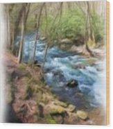 Vista Series 1244 Wood Print