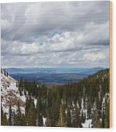 Vista With Snow And Red Rock Wood Print