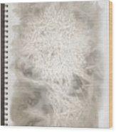 Visual Diary Dandelion Wood Print