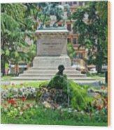 Vittorio Emanuele II Statue Wood Print