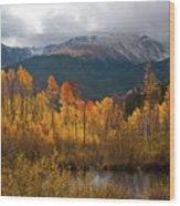 Vivid Autumn Aspen And Mountain Landscape Wood Print