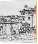 Vizcaya Museum In Miami Wood Print