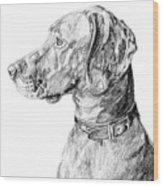 Vizlsa Dog Wood Print