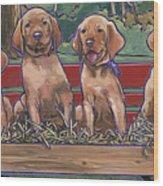 Vizsla Pups Wood Print