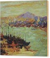 Vladivostok  River Wood Print