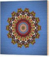 Voladores Kaleidoscope 3 Wood Print