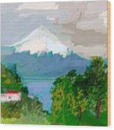 Volcanes Sur De Chile Wood Print