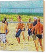 Volleyball At Gordons Pond Wood Print