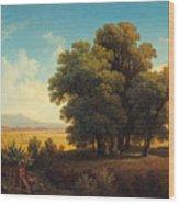 Vue Af Romerska Campagnan Wood Print