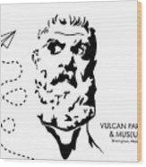 Vulcan's Airplane Wood Print