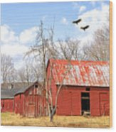 Vultures Over Barn Wood Print