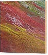 W 036 Wood Print