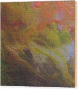 W 051 Wood Print