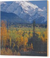102238-v-w End Of Seven Sisters Mountain  Wood Print
