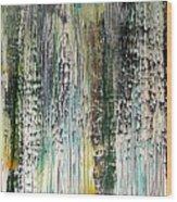 W73 - Raining Up Wood Print