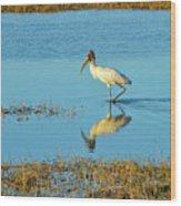 Wadding Wood Stork And Reflection Wood Print