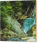 Wader's Hunt Wood Print