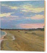 Wades Beach Sundown Study II Wood Print