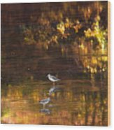 Wading In Light Wood Print