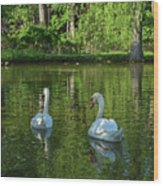 Wagner Vinyard Estate Swans Finger Lakes Lodi Ny Wood Print
