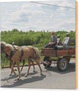 Wagon 10 Wood Print