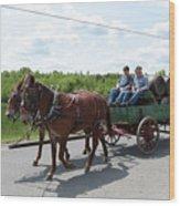 Wagon 12 Wood Print