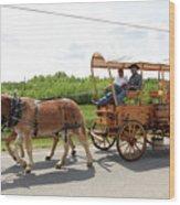 Wagon 13 Wood Print