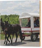 Wagon 6 Wood Print
