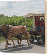 Wagon 7 Wood Print
