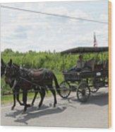 Wagon 9 Wood Print