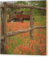Wagon In Paintbrush - Texas Wildflowers Wagon Fence Landscape Flowers Wood Print by Jon Holiday