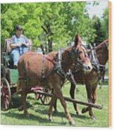 Wagon Supply Wood Print