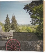 Wagon Wheel County Clare Ireland Wood Print