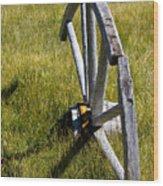 Wagon Wheel In Grass Wood Print