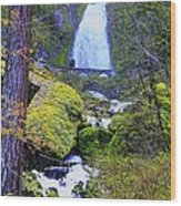 Wahkeena Falls Wood Print