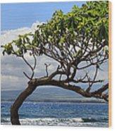 Waiehu Panarama Wood Print