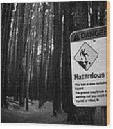 Waihou Spring Trail Waihou Spring Forest Reserve Maui Hawaii Wood Print