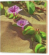Wailea Beach Morning Glory With Honeybee Wood Print