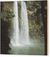 Wailua Falls 3 Wood Print