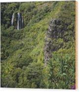 Wailua Falls And Tropical Plants Wood Print