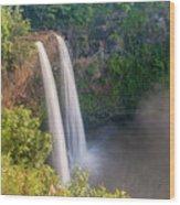 Wailua Falls - Kauai Hawaii Wood Print
