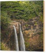 Wailua Falls Kauai I Wood Print