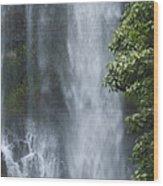 Wailua Falls Wood Print