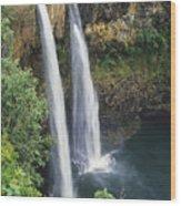 Wailua Falls Surrounded By Foliag Wood Print