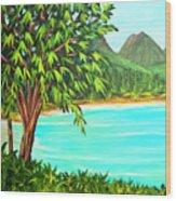 Waimanalo Beach Oahu #385 Wood Print