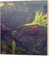 Waimea Canyon Wood Print